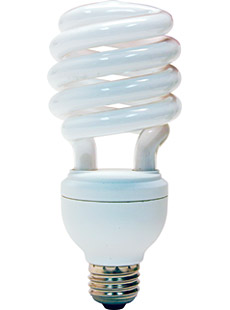 Information about Saving money with Compact Fluorescent ...